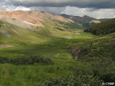 Colorado Wetlands