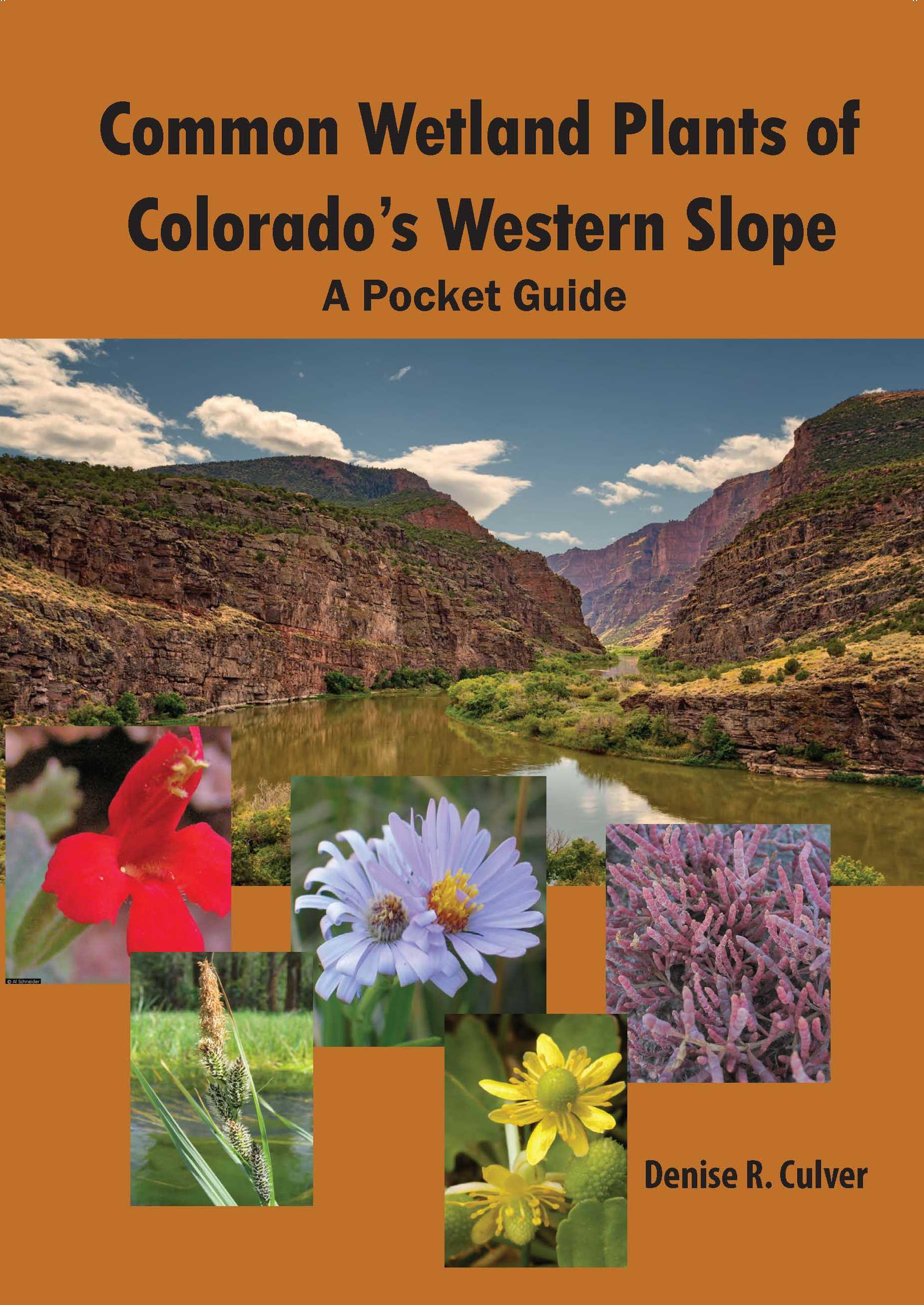 Common Wetland Plants of Colorado's Western Slope: A Pocket Guide