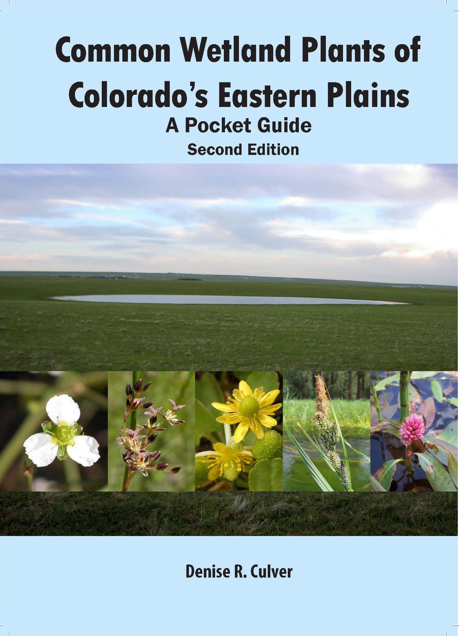 Common Wetland Plants of Colorado's Eastern Plains: A Pocket Guide Second Edition