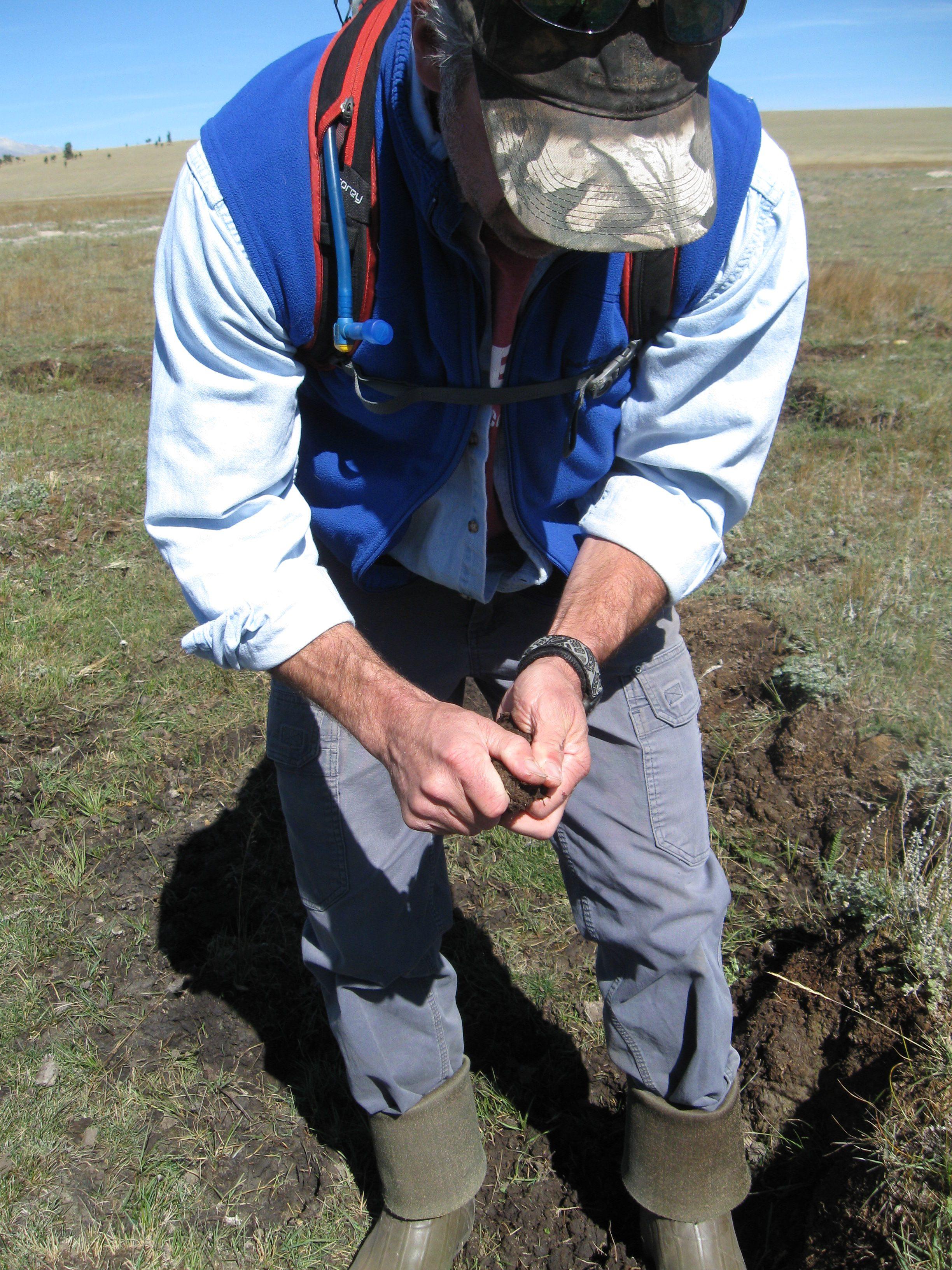 Brad Johnson examines degraded wetland soil. Joanna Lemly, CNHP.