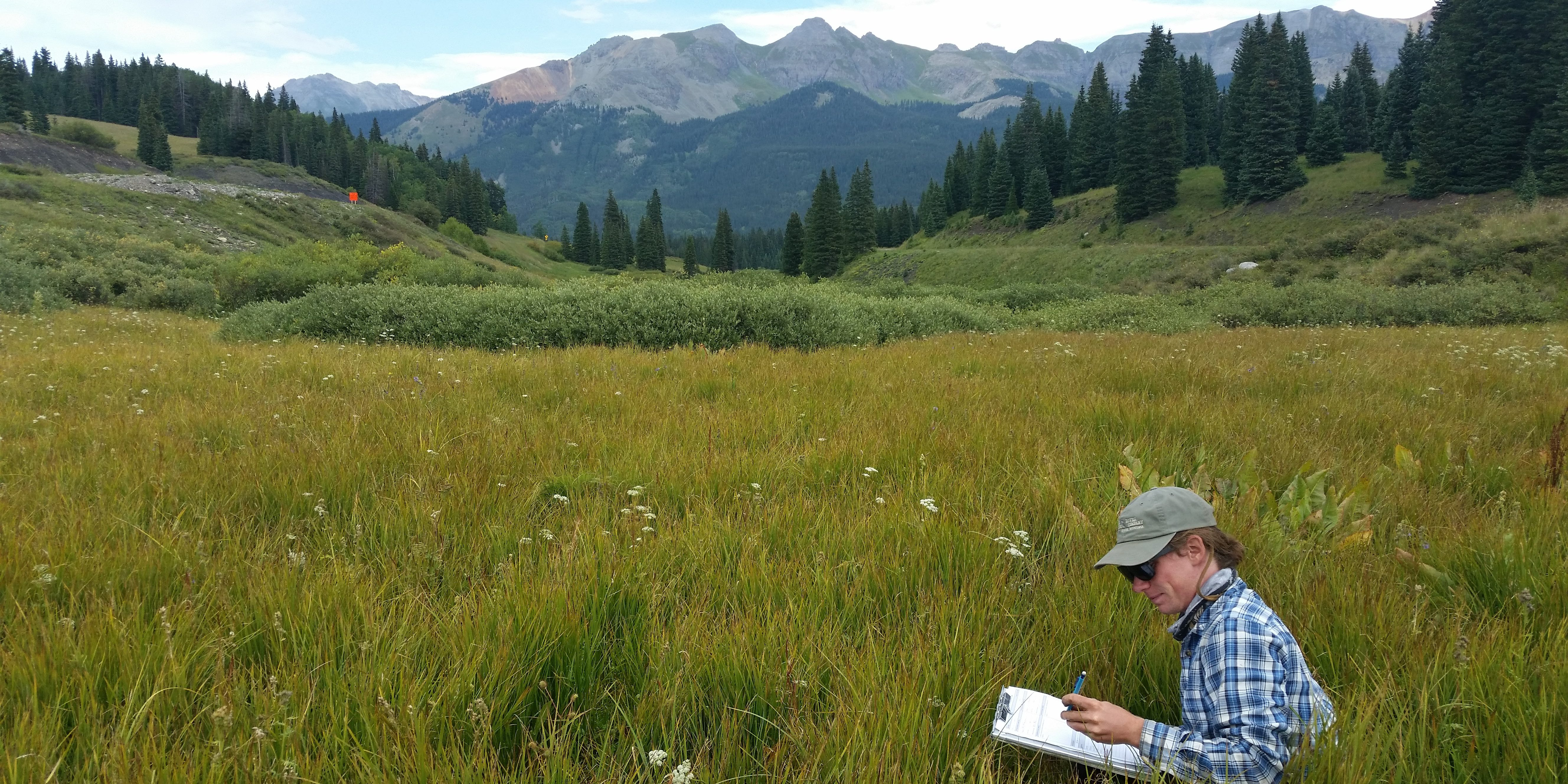 Assessing fen vegetation in the San Juan Mountains. CNHP Staff.