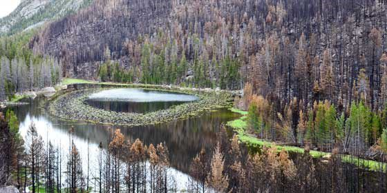 Cub Lake following the Fern Lake Fire in Rocky Mountain National Park. NPS staff.