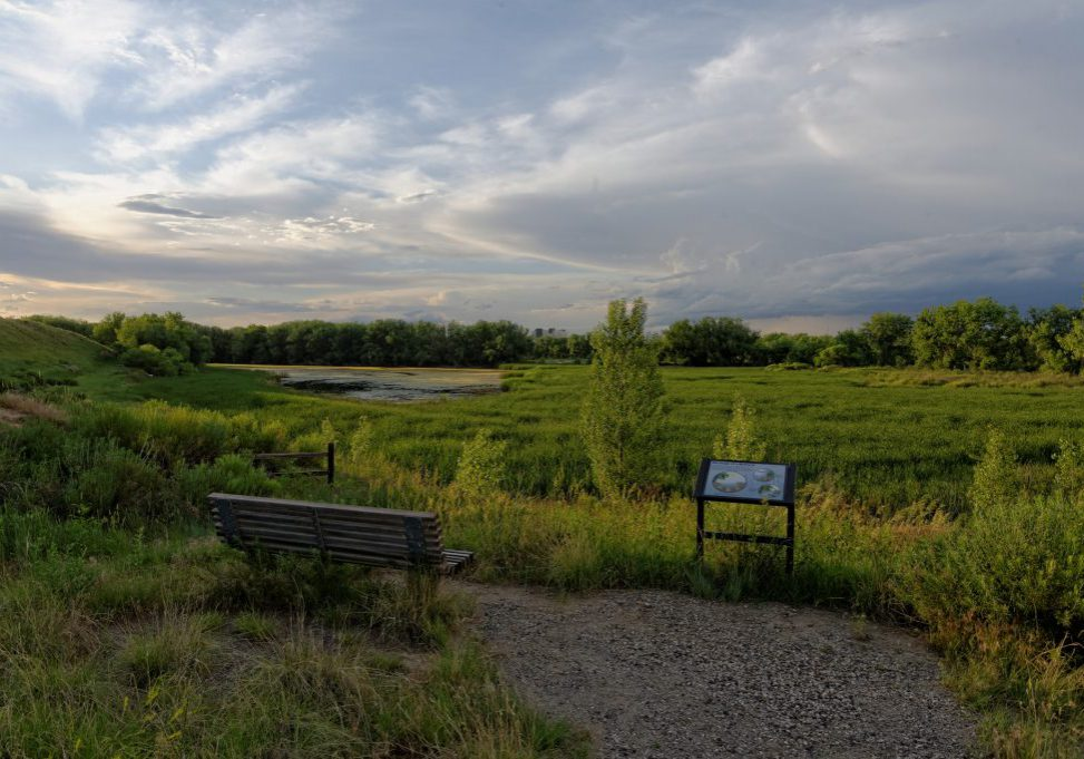 Pathway and interpretive sign overlooking wetlands at Bluff Lake, Denver. Michael Menefee, CNHP.