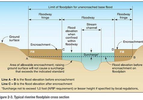 Floodplain cross section showing the floodway and floodway fringe. FEMA.