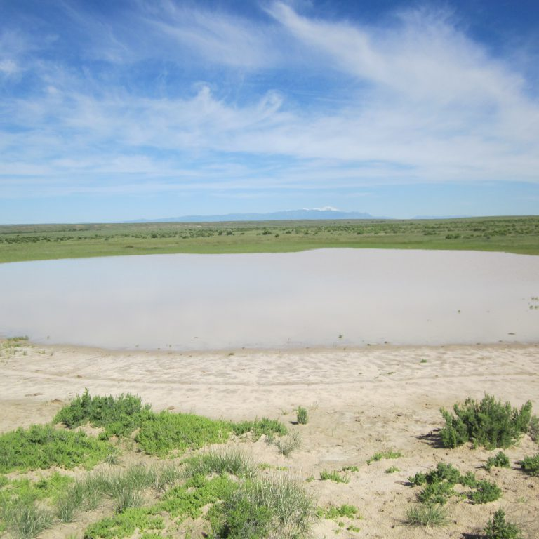 Great Plains playa, filled from spring rains, Arkansas Basin. Joanna Lemly, CNHP.