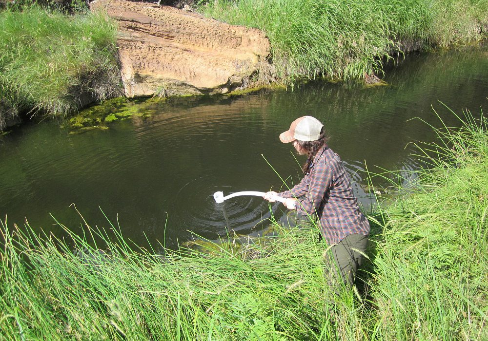 Collecting water quality samples from a Great Plains riparian area. Joanna Lemly, CNHP.