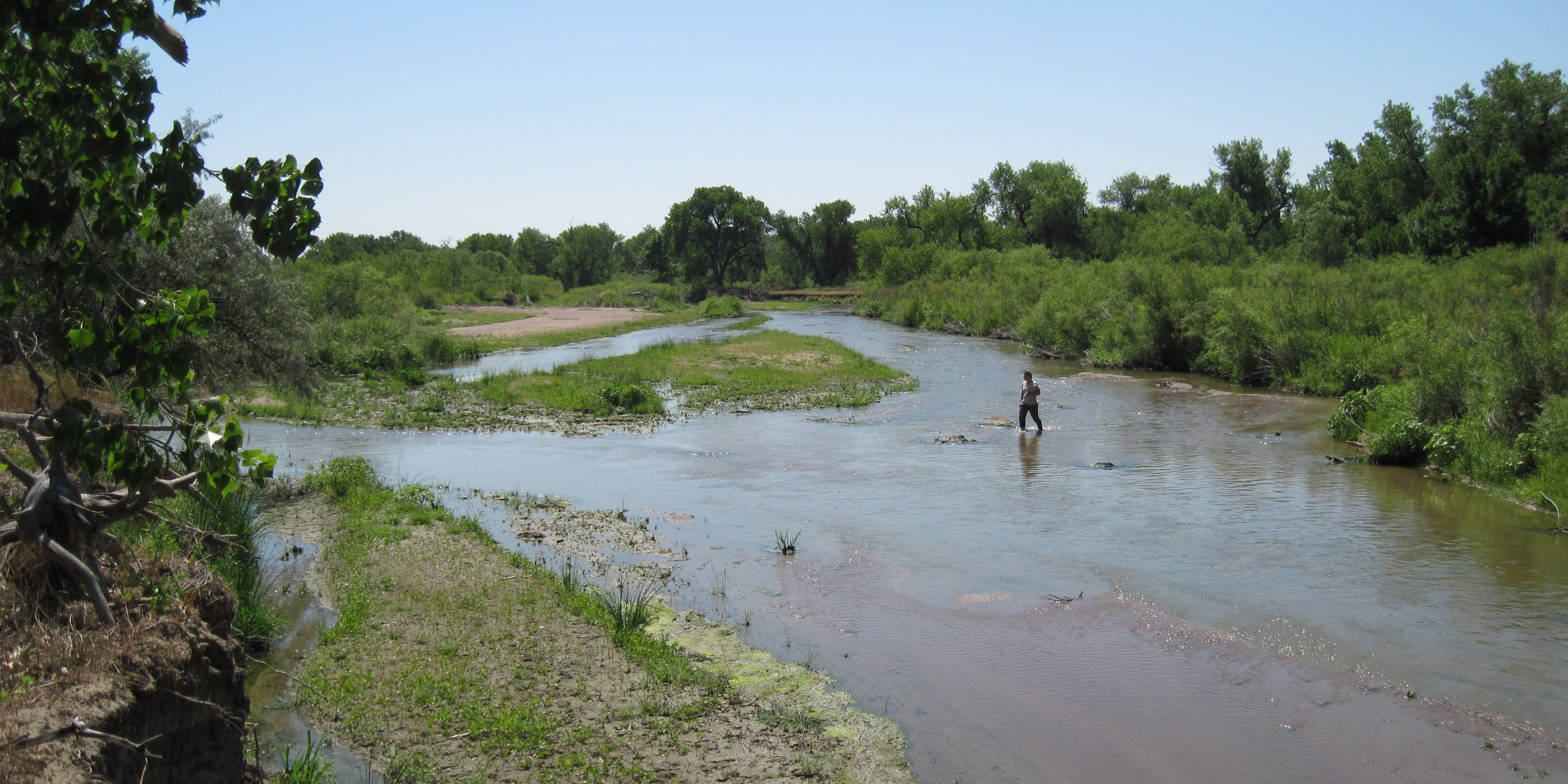 Floodplain of the Lower South Platte River. Joanna Lemly, CNHP.