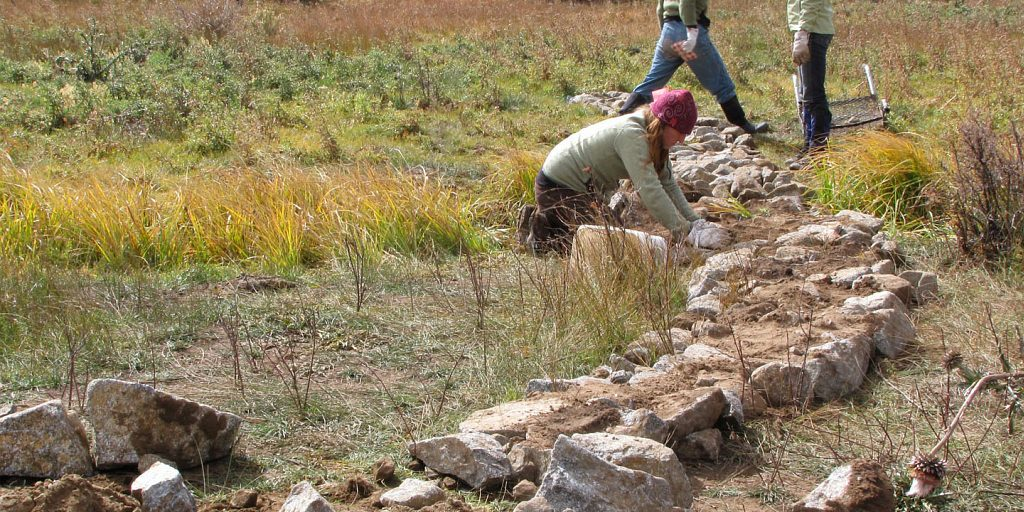 Volunteer restoration work in Wolf Creek, 2012.