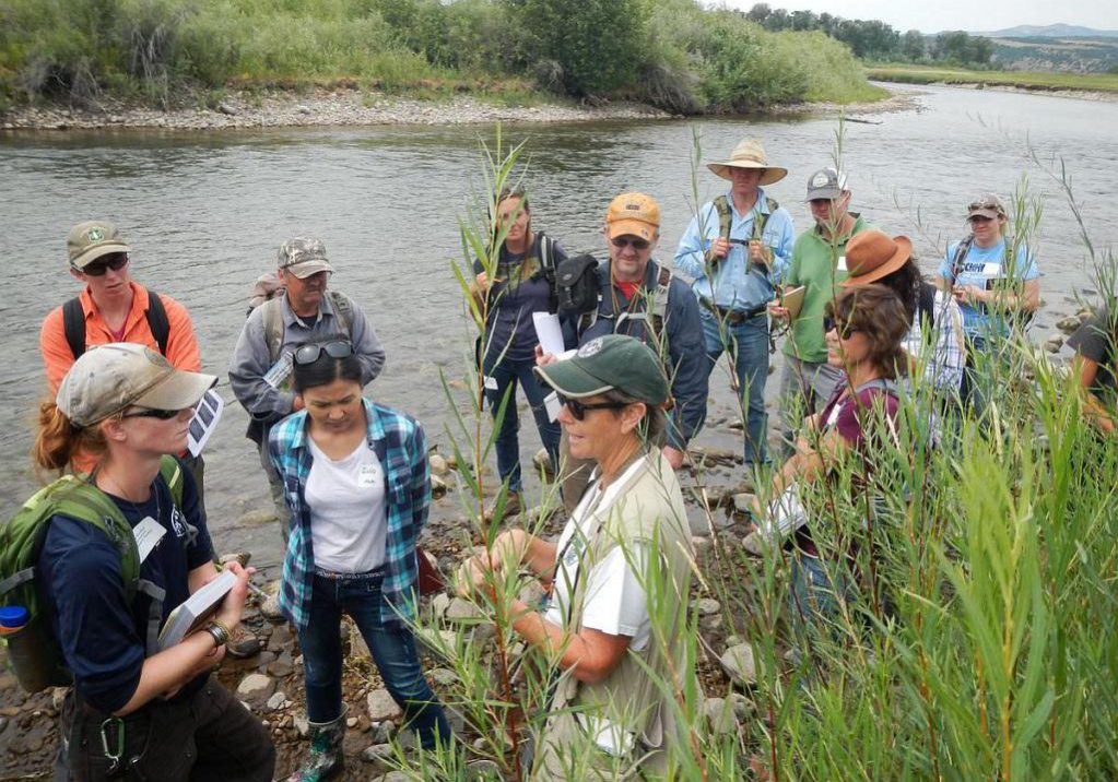 Denise Culver leads a wetland plant identification training. Pam Smith, CNHP.
