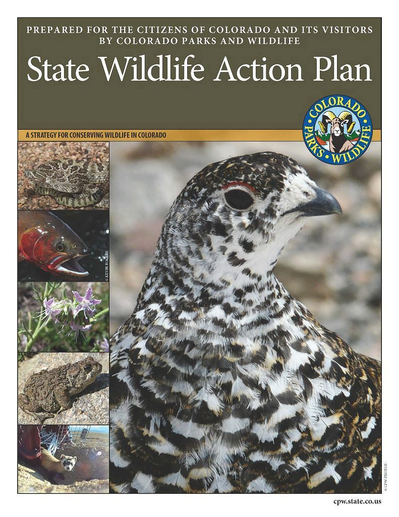 State Wildlife Action Plan Cover