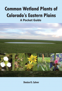 Common Wetland Plants of Colorado's Eastern Plains: A Pocket Guide