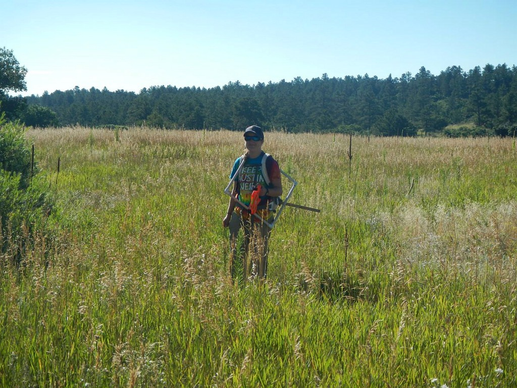 Monitoring noxious weeds at the Air Force Academy.