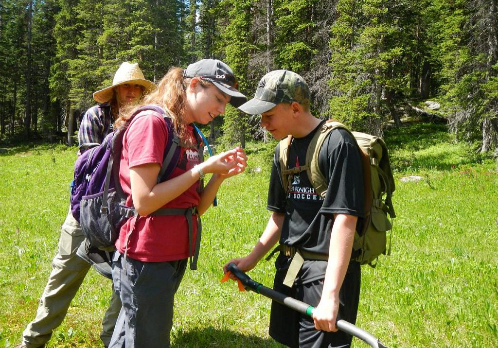 Siegele Interns gain valuable field experience.