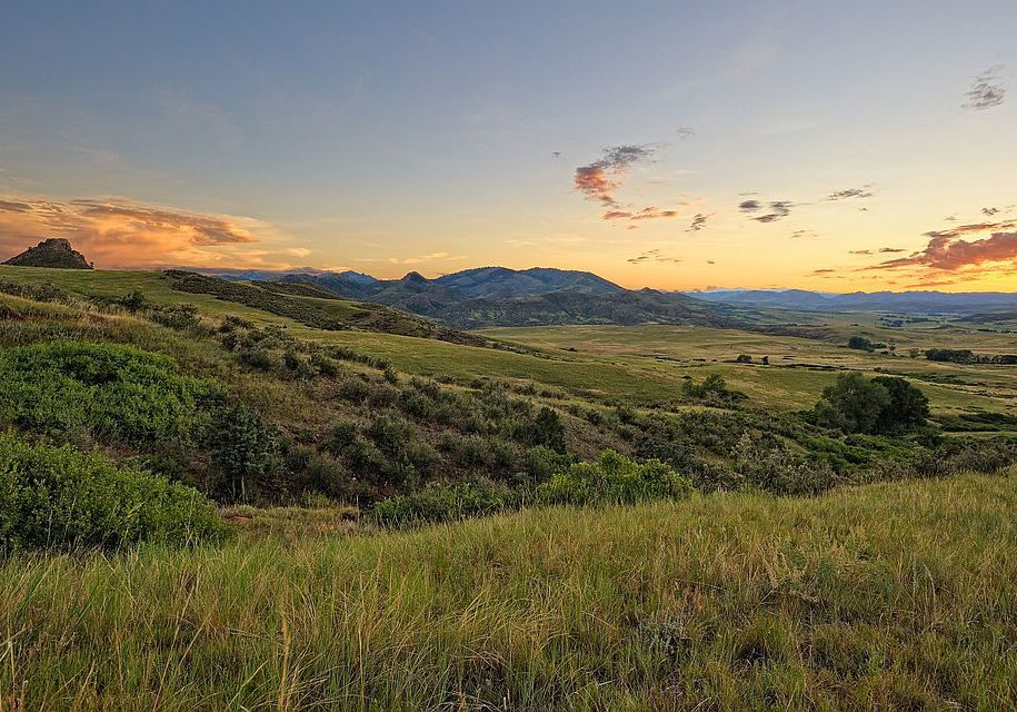 Eagle's Nest Potential Conservation Area in Northern Larimer County. Photo by Michael Menefee.