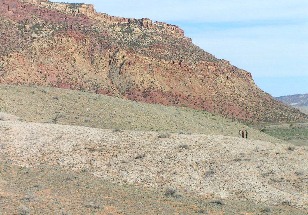 Rare plant habitat in western Colorado by Susan Panjabi.