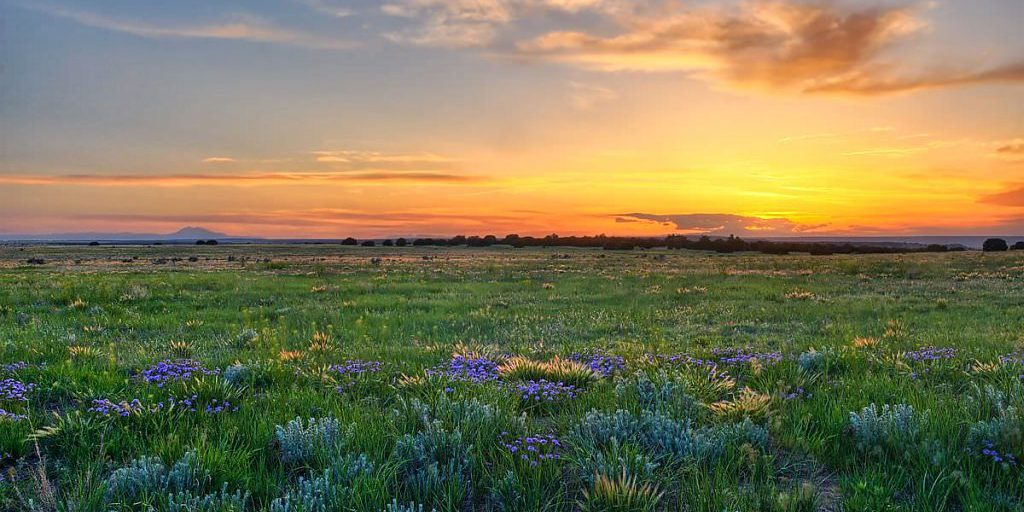 Central Shortgrass Prairie by Michael Menefee