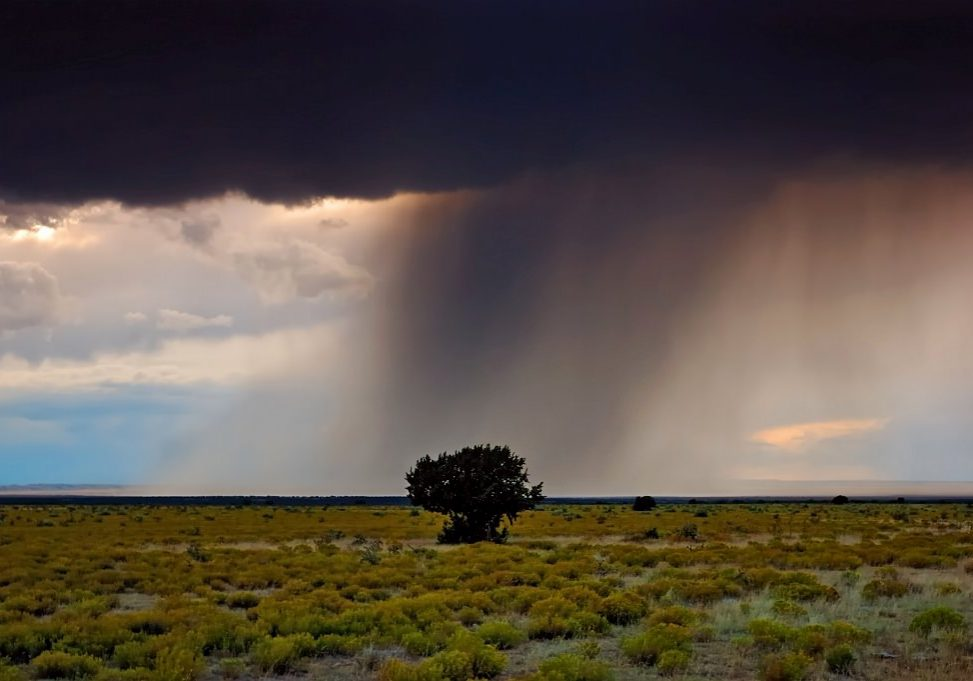 Thunderstorm on privately conserved lands in Southeastern Colorado.